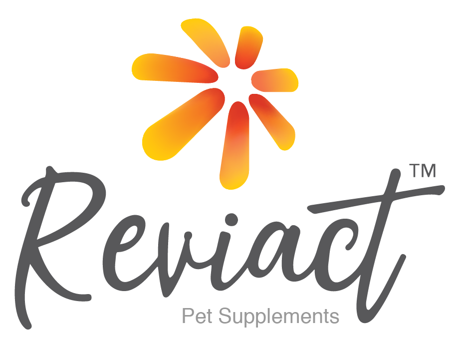 REVIACT Pet Supplement